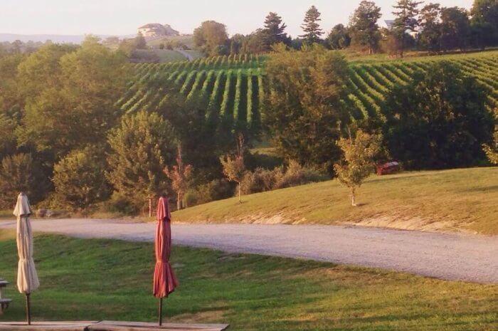 Premier Virginia Winery